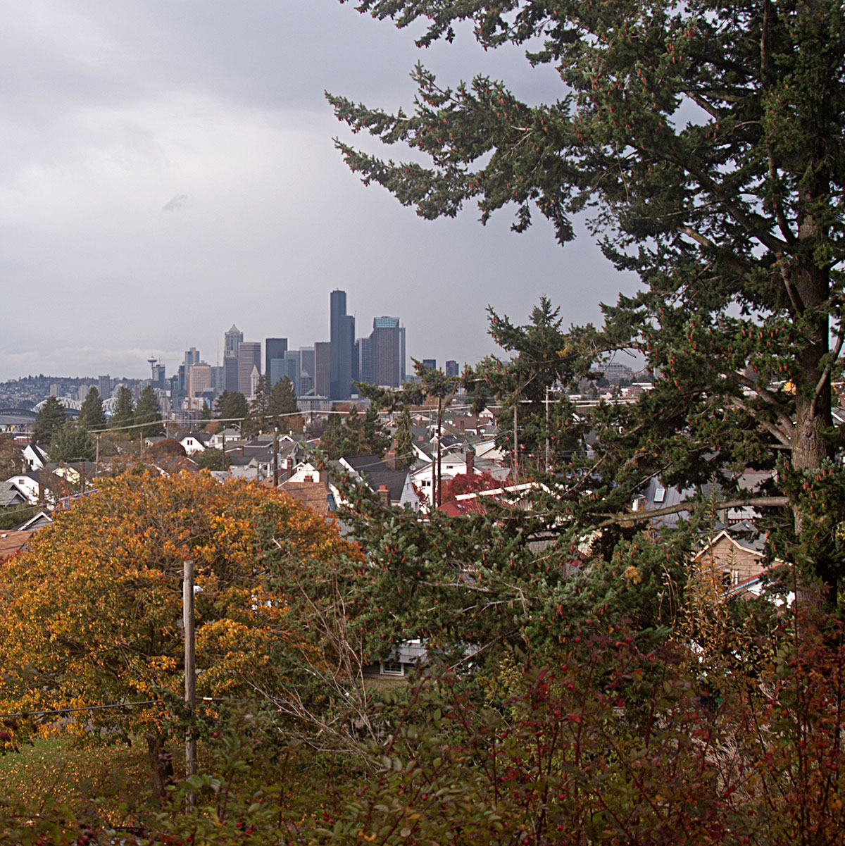 VIew of downtown Seattle from Jefferson Park.