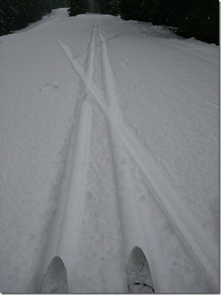 Two sets of ski tracks on the Iron Horse trail east of the Whittier Tunnel