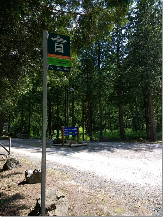 Bus stop for the trailhead direct bus at a forested trailhead