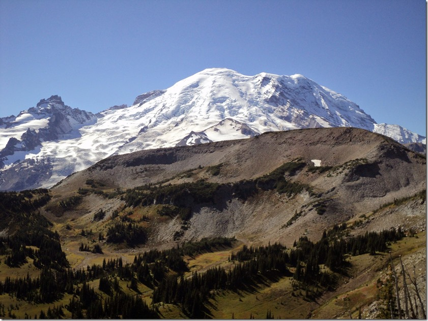Mt Rainier rises behind a closer gravel and tree spotted meadow on a sunny day