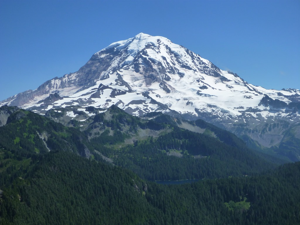 Mt Rainier with forested foreground on a blue sky day