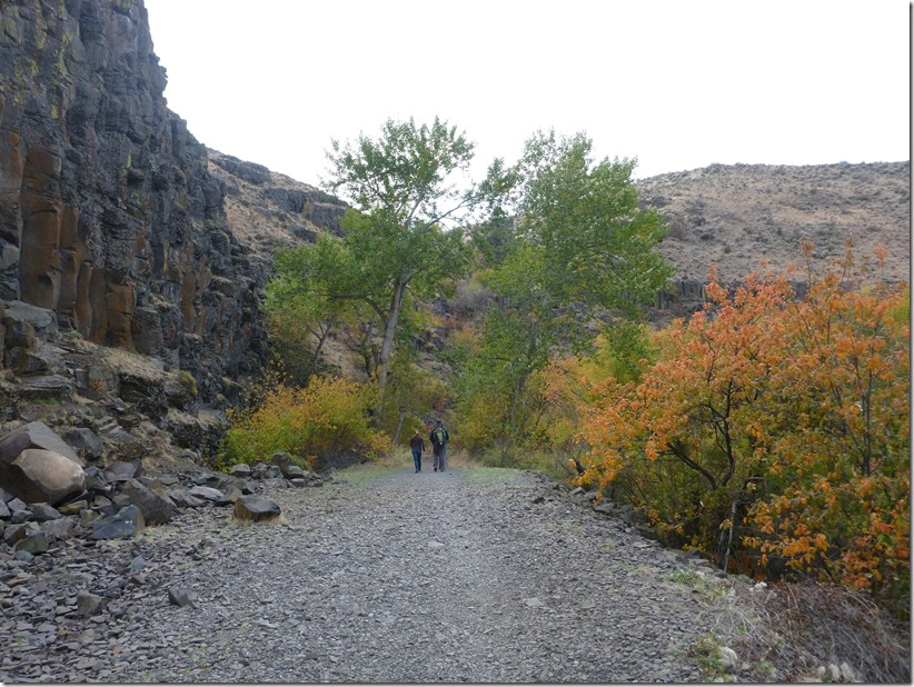 Cowiche Canyon Fall Color