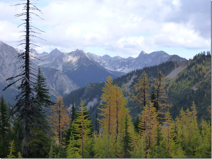 Maple Pass Trail Fall North Cascades golden larches