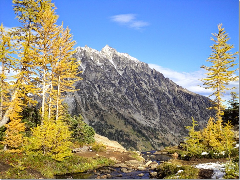 Mt Stuart has a dusting of new snow and is framed by golden larches on the Lake Ingalls Trail, one of the best fall hikes near Seattle