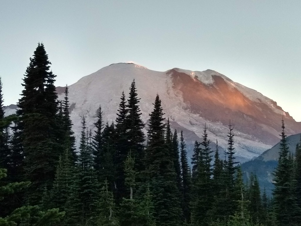 Mt rainier sunrise picnic area sunset
