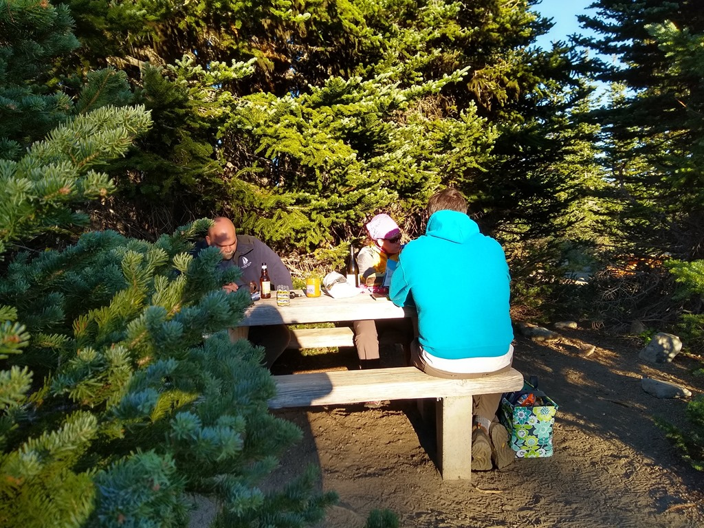 Sunrise picnic area Mt Rainier picnic table