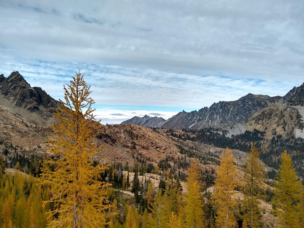 In the foreground are golden larch trees, in the background large mountains against a cloudy sky