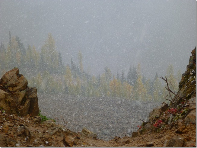 A  sudden snowstorm on the Maple Pass Loop trail, golden and evergreen trees are barely visible through the snowfall.