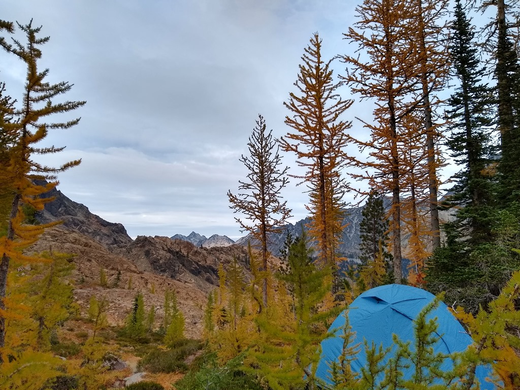 A blue tent among golden larch trees in the foreground in headlight basin near the Lake Ingalls trail. In the background there are distant mountains