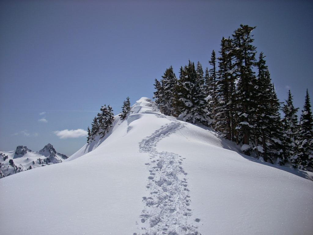 winter day trip to Mt rainier snowshoeing alta vista paradise