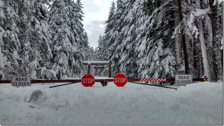 Government shutdown access to mt rainier and olympic national park