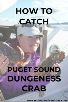 A woman holds two dungeness crabs and is smiling on a boat. Text reads How to Catch Puget Sound Dungeness Crab