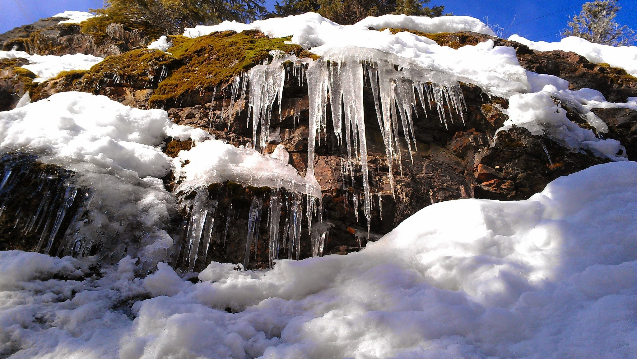 Icicles hanging from snowy rocks