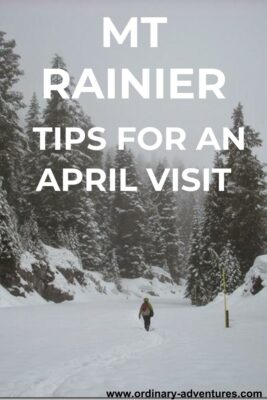 Woman walking on a snowy road through the forest on a snowy day. Text reads Mt Rainier tips for an April visit