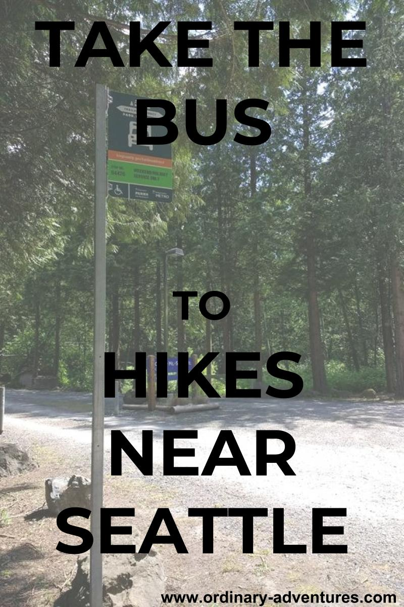 A bus stop at a trailhead in the forest