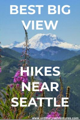 Mt Rainier in the background with high green mountains and purple flowers in the foreground. Text reads: Best big view hikes near Seattle