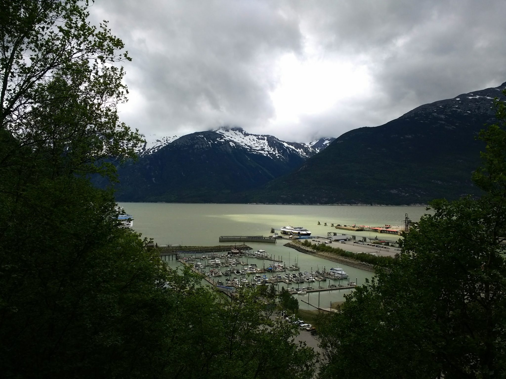 A harbor with snow capped mountains in the background and trees in the foreground