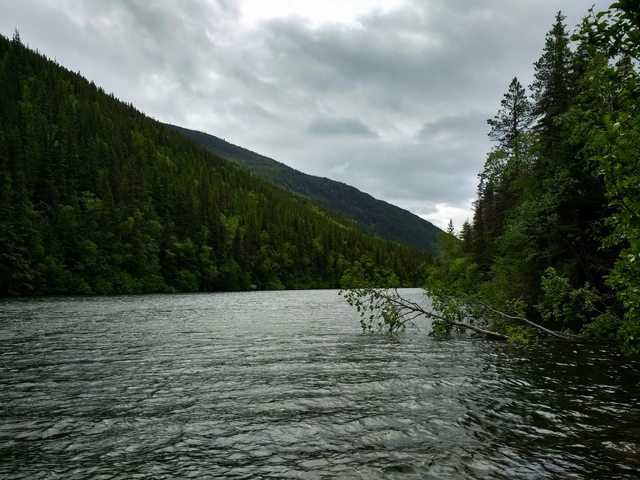 A lake surrounded by forested hills