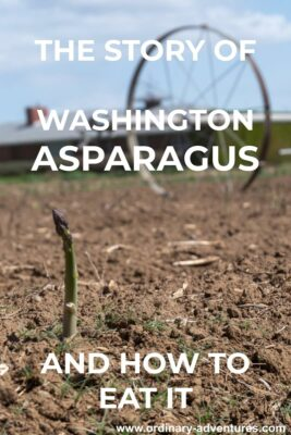 A single spear of asparagus in a field with irrigation equipment behind it. Text reads: The story of Washington asparagus and how to eat it.