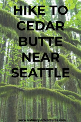 Cedar Butte Hike is a trail through a mossy green forest to a view. The trail has straight, young trees and arches of moss. Text reads: Hike Cedar Butte near  Seattle