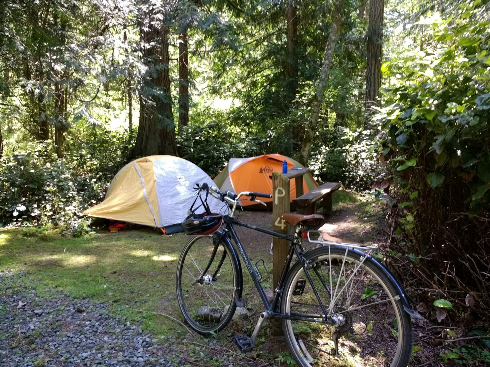 Camping in the San Juan Islands by bike at a small campsite. There are two tents and a bike leaning against a wooden bench in the forest