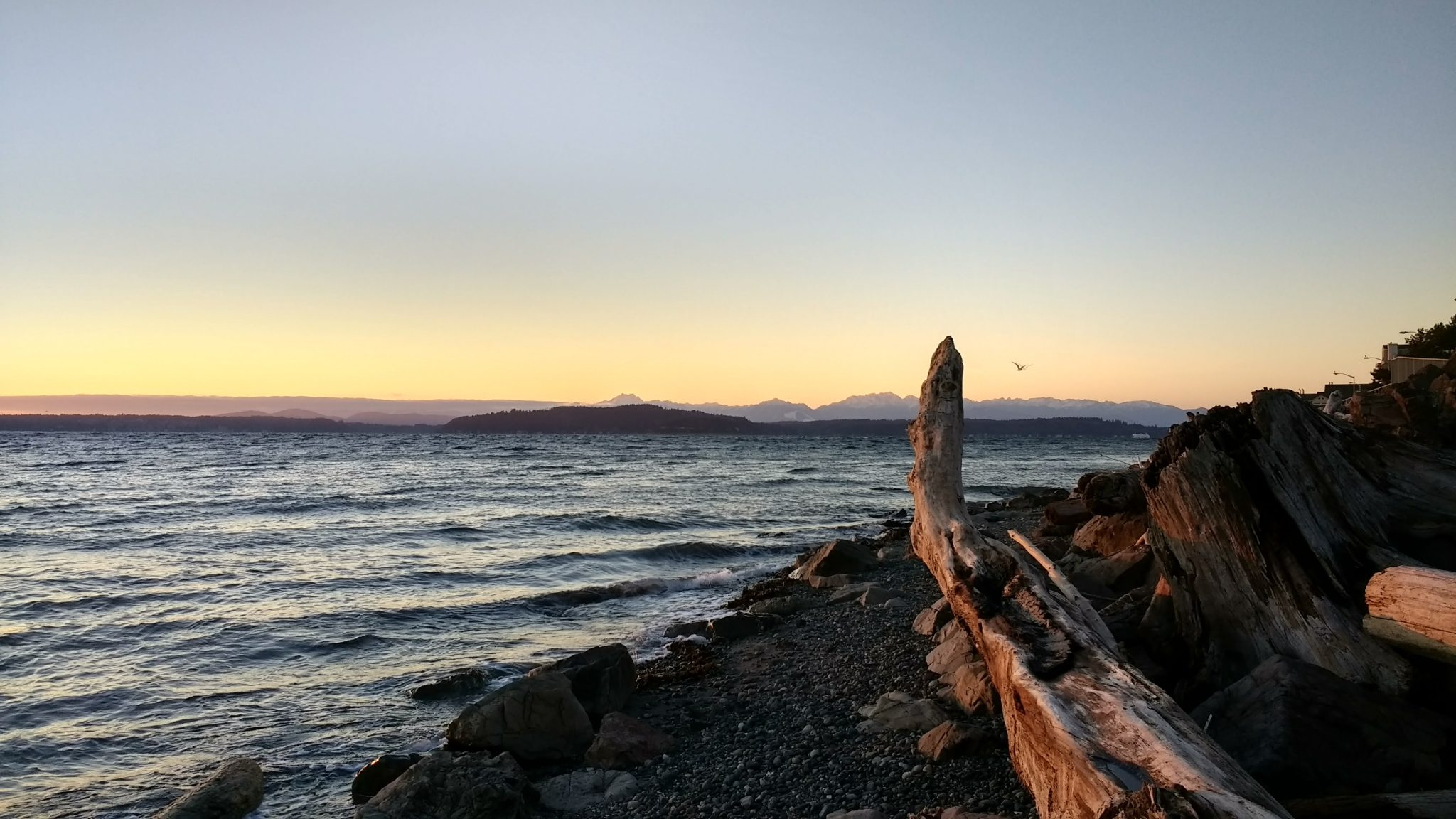 A sunset at the beach with mountains in the distance. A piece of driftwood is in the foreground.