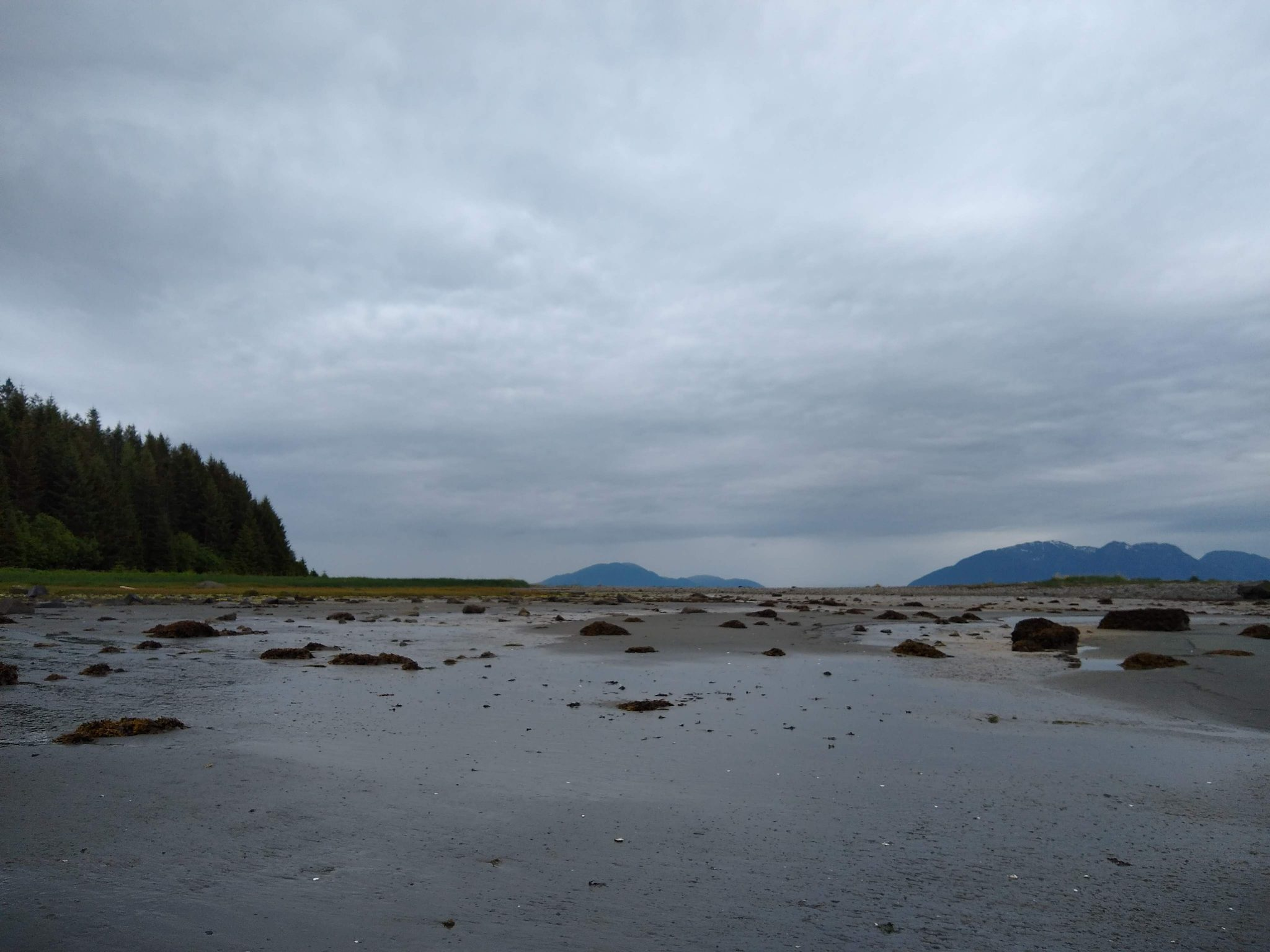 A beach at low tide with sand and rocks, there are forested, green hills around it. It's a gray, rainy day, the picture is very dark on a visit to glacier bay national park