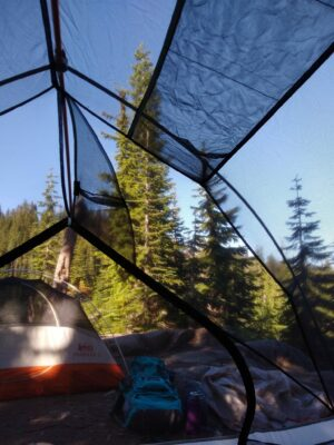 A photo taken inside a backpacking tent to deal with mosquitoes. In the foreground is a backpack and a jacket as well as another tent. The campsite is surrounded by evergreen trees and a blue sky day
