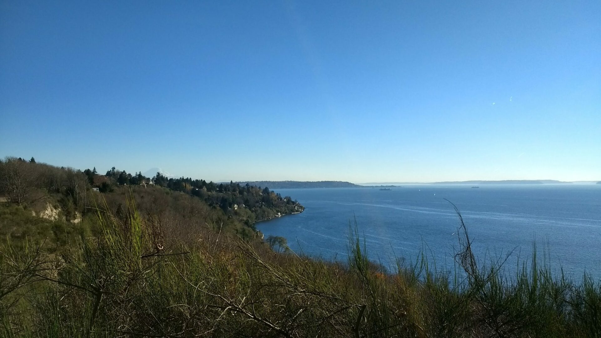 A hillside in front of blue water with islands in the background on a sunny day.