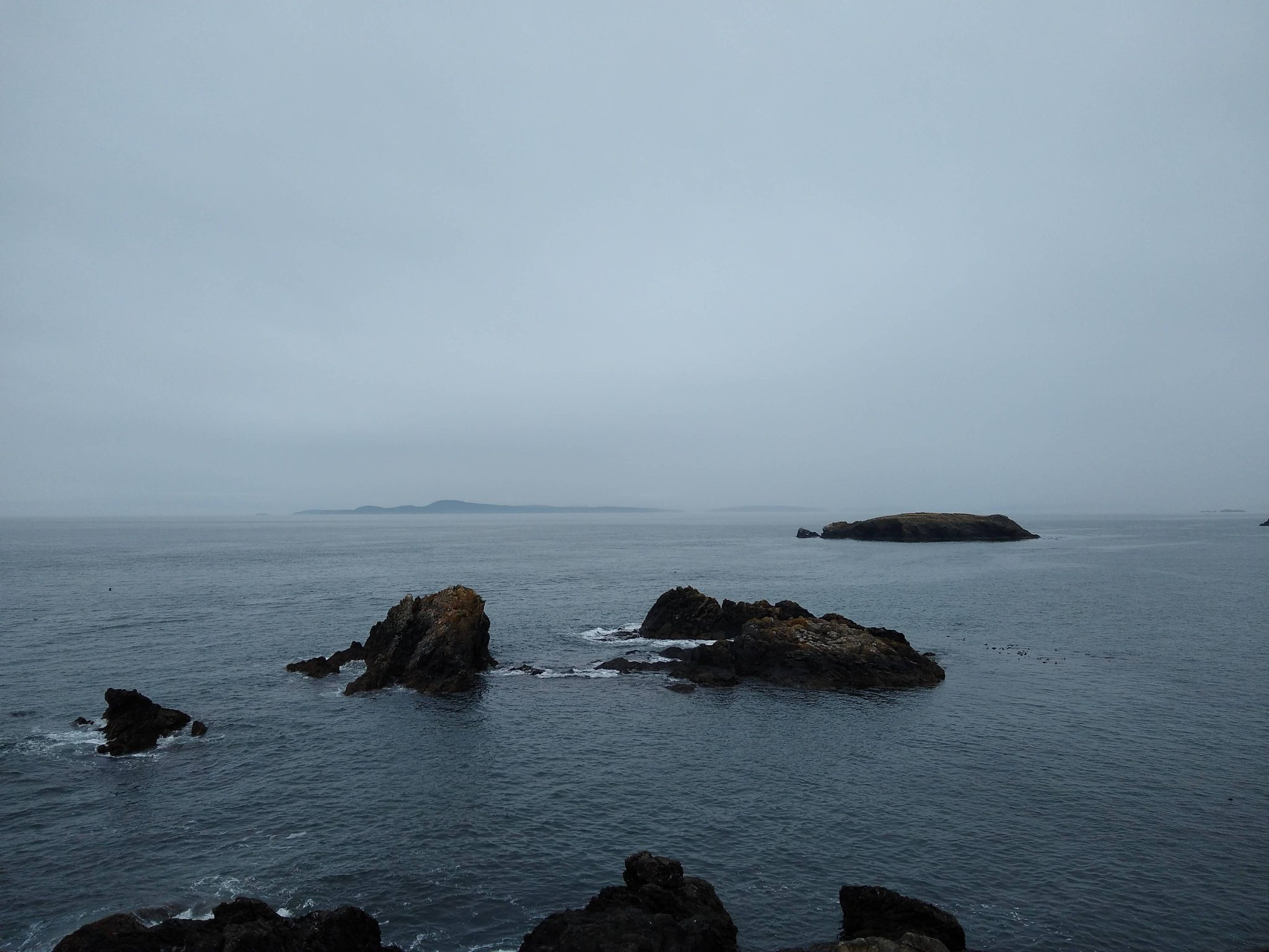 Small rocky islands in the water in Deception Pass state park. The sky and water are gray and foggy.