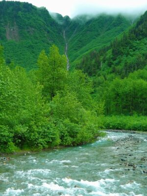A creek rushes through a green forest in a valley. The valley is surrounded by steep forested cliffs and a thin waterfall is coming down the valley wall. Clouds cover the hills around it