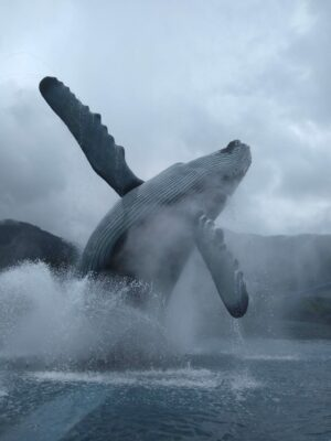 A life size humpback whale sculpture  shows a whale breaching out of the water. There is a fountain around it and it's a foggy, rainy day