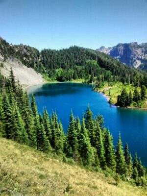A blue alpine lake surrounded by green meadows, forest and rocky hillsides