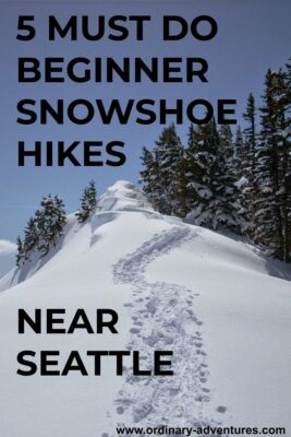 New snow surrounding distant mountains and nearby trees, with a winding snowshoe path to a point. Text reads: 5 Must do beginner snowshoe hikes near Seattle
