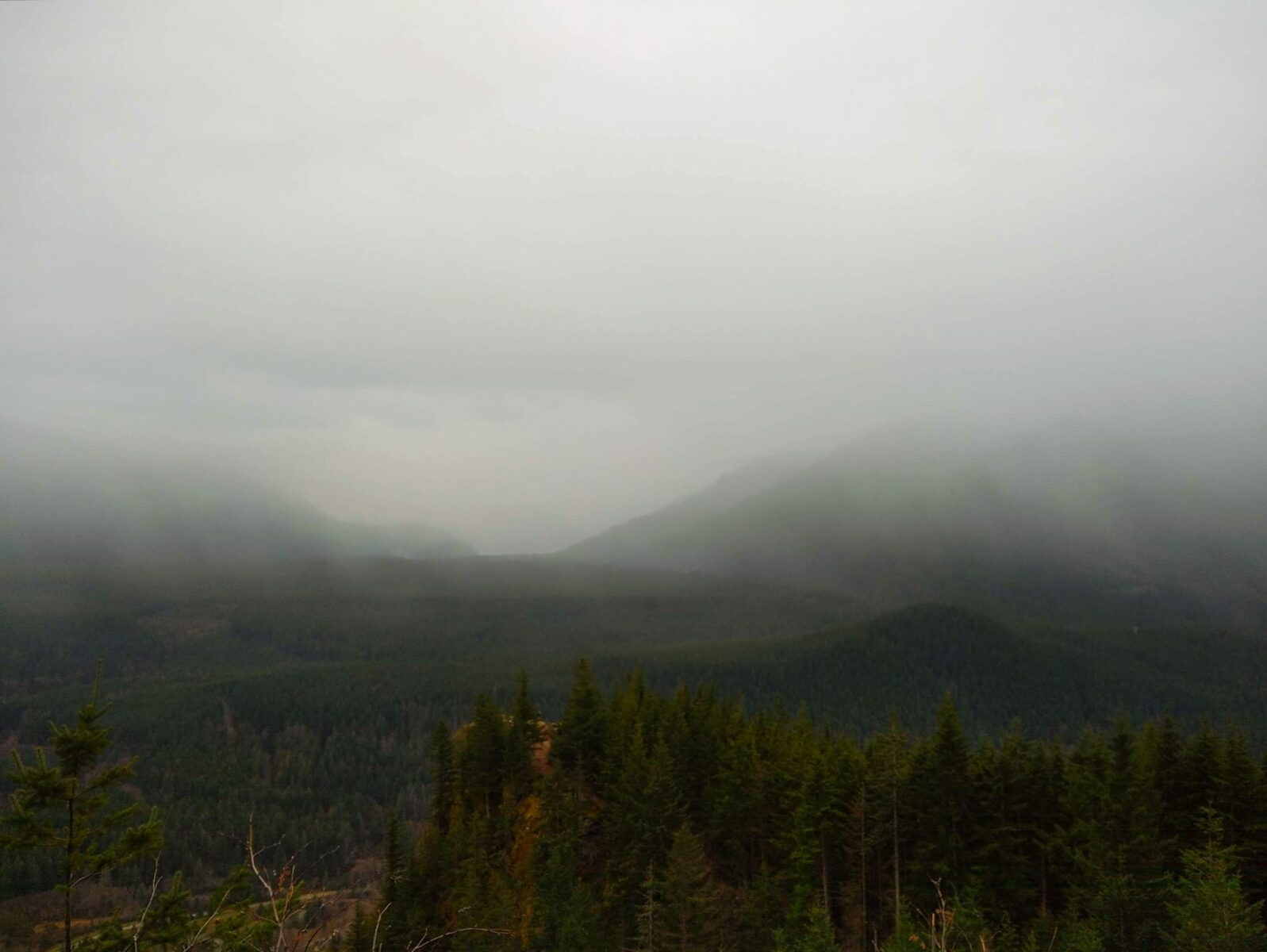 On the Rattlesnake Mountain hike near north bend, a view down to Rattlesnake Ledge, a popular hiking destination. In the foreground are evergreen trees, in the background there are low clouds covering the mountains and clinging to the middle fork snoqualmie river valley.