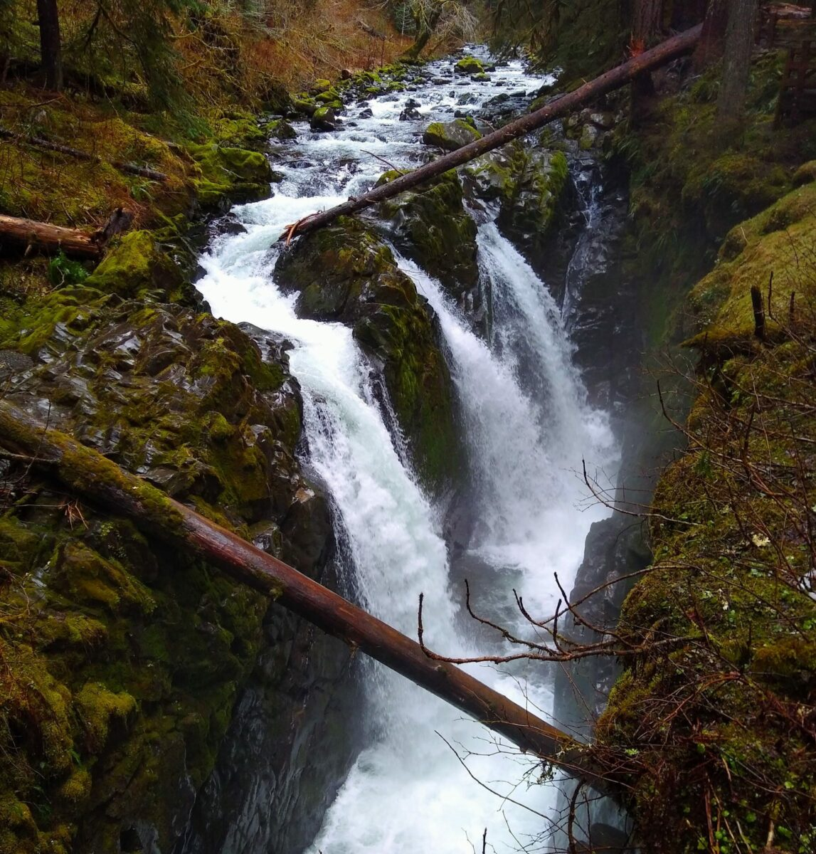 A waterfall with three channels plunges over the rocks at the end of the Sol Duc falls trail, one of the best hikes in washington