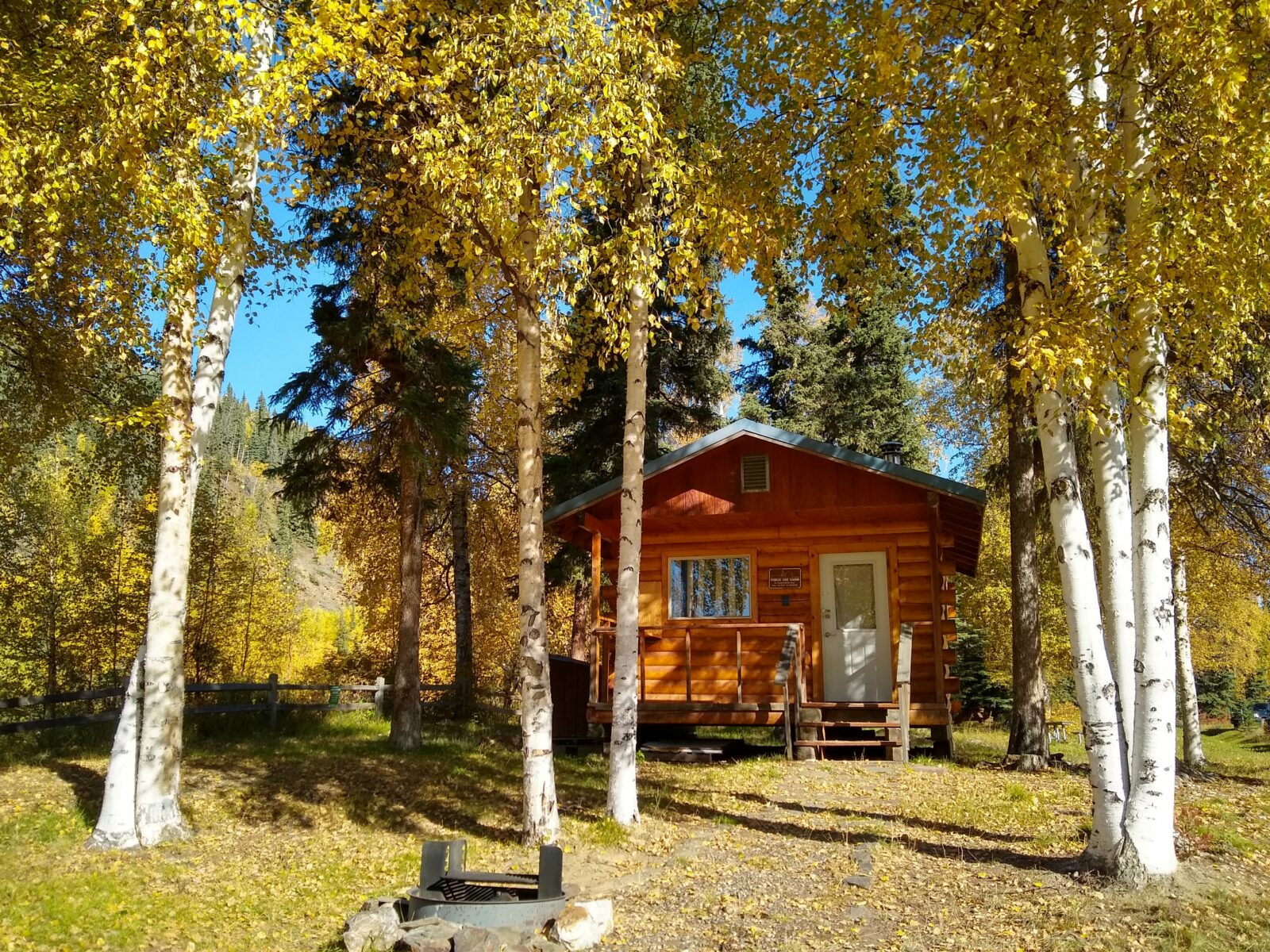 One of the most unique things to do in Fairbanks is to stay at one of Alaska's many public use cabins. A small wooden cabin in golden birch trees with a firepit in front