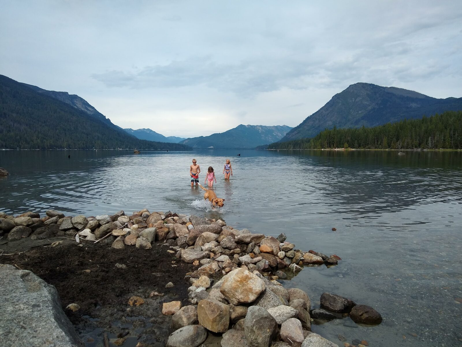 kids and a dog wade in the water of a lake. There are rocks on the beach and forested hillsides in the background