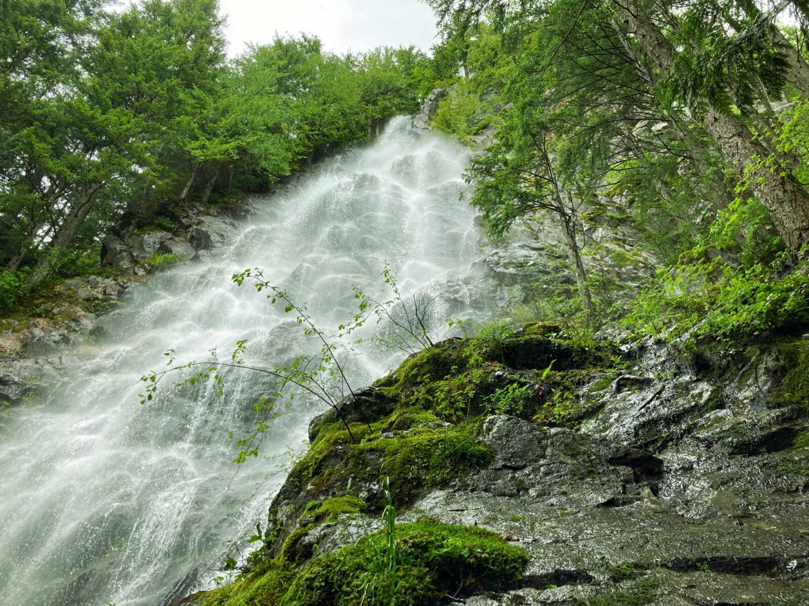 Looking up from the base of a steep waterfall with water and spray coming down a steep rock face. There are rocks and trees surrounding it