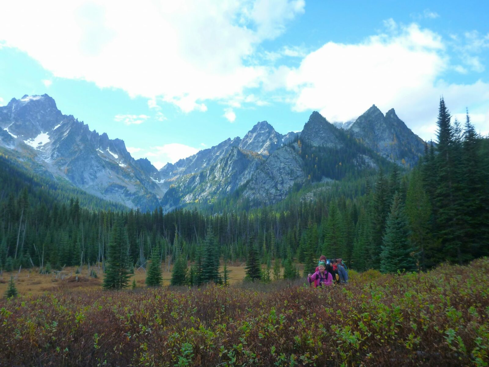 Bushes in the foreground in a meadow surrounded by evergreen trees and high mountains with snow. A group of hikers are going through the meadow