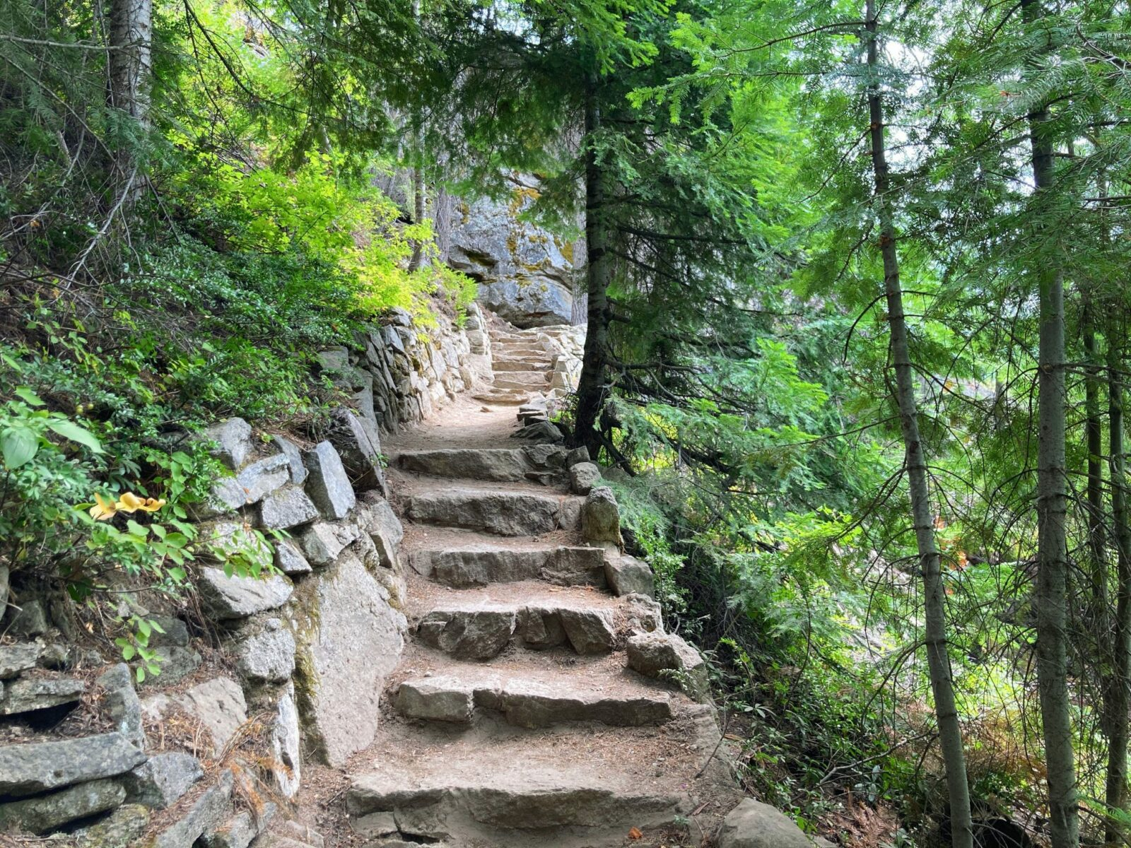 Stone steps along the Silver Falls trail through the forest.