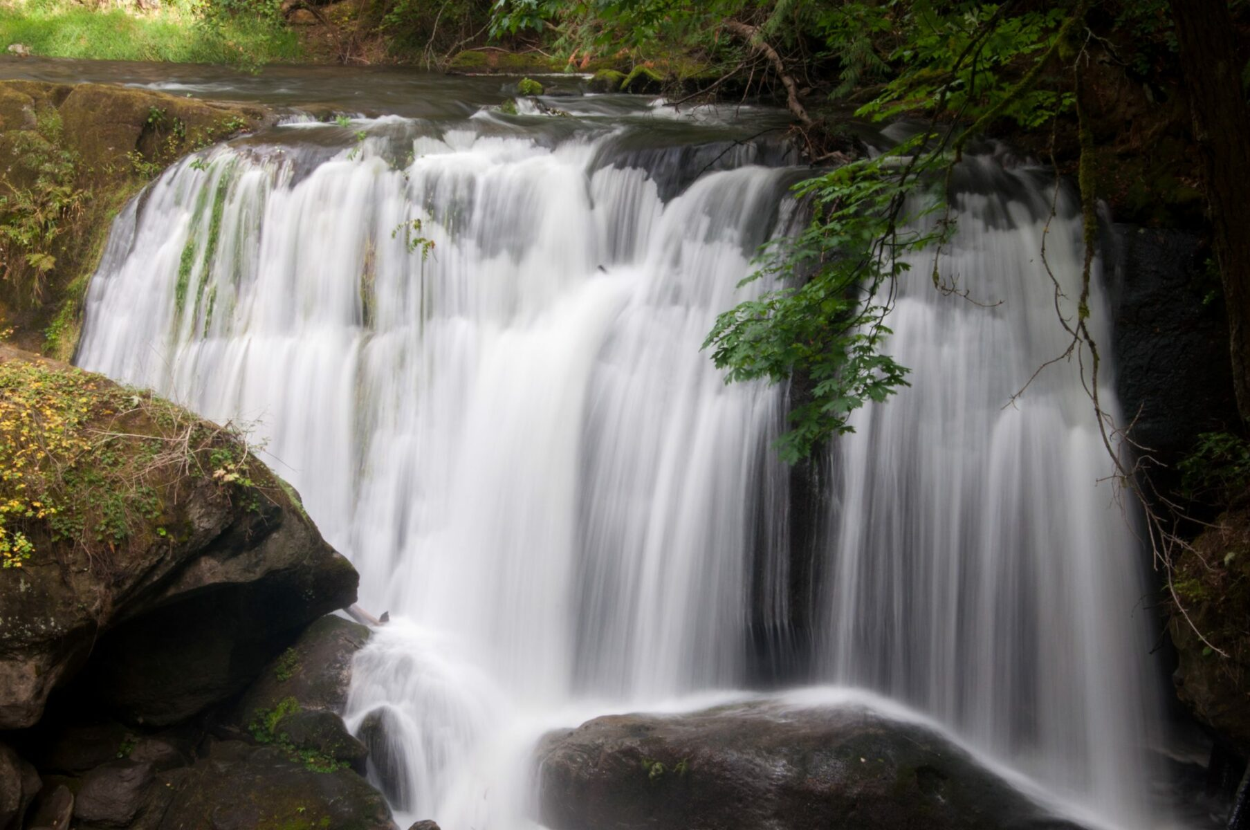 A wide waterfall going over rocks with a surrounding forest