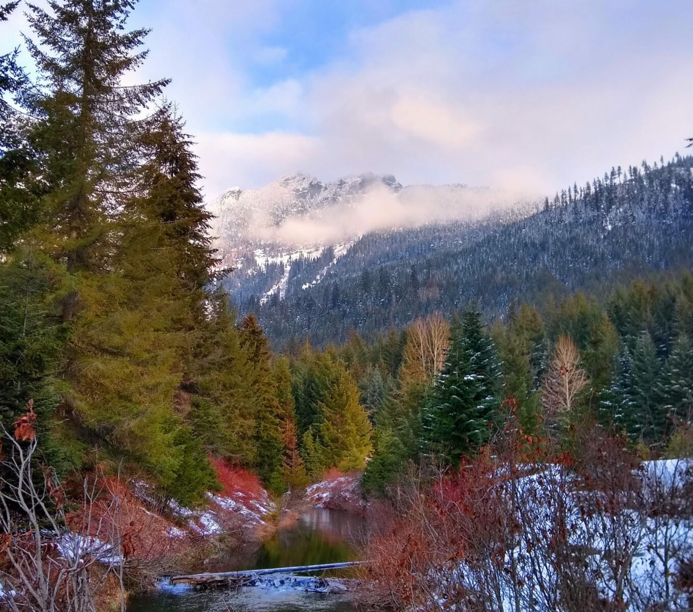 A wonderful fall hike from Seattle (and all year!) Gold Creek winds through evergreen trees and near high snow covered mountains.