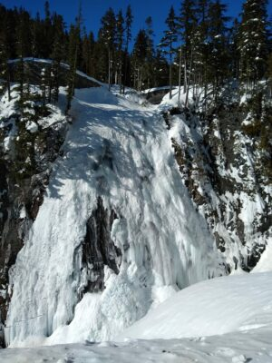 A frozen waterfall on the edge of rocks in Mt Rainier National Park. There are evergreen trees around the waterfall.