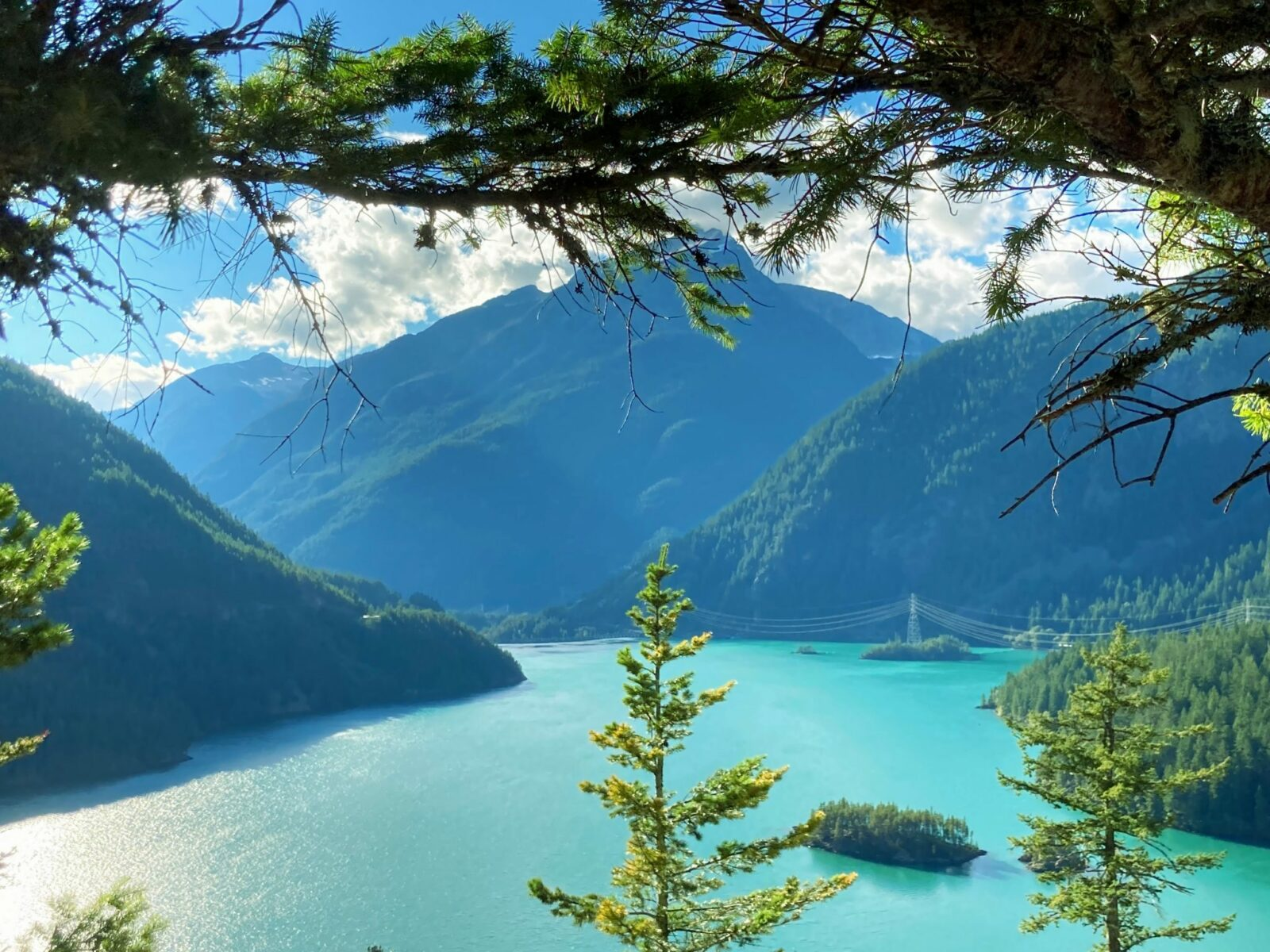 Diablo Lake, a turquoise lake in North Cascades National Park is far below and surrounded by forested hills. Power lines from the dam are in the distance. Tree branches are in the foreground
