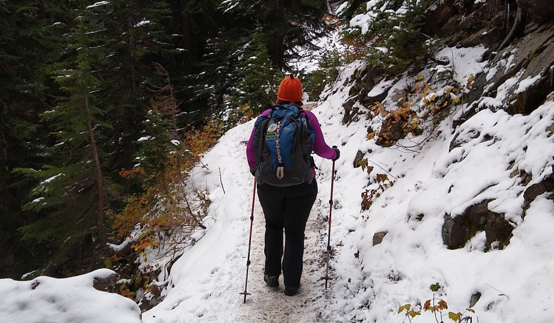 A women wearing black hiking pants, a purple shirt, an orange hat and a blue backpack on a partially snow covered trail in the forest