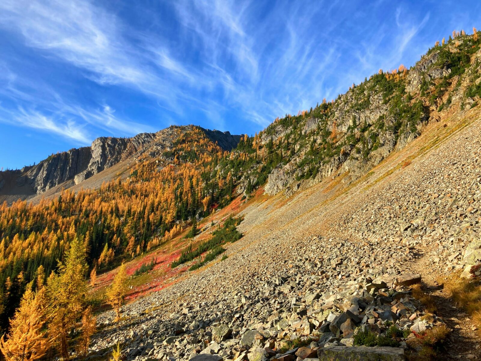 A rocky mountainside with evergreen trees and golden larch trees on the way to Grasshopper Pass