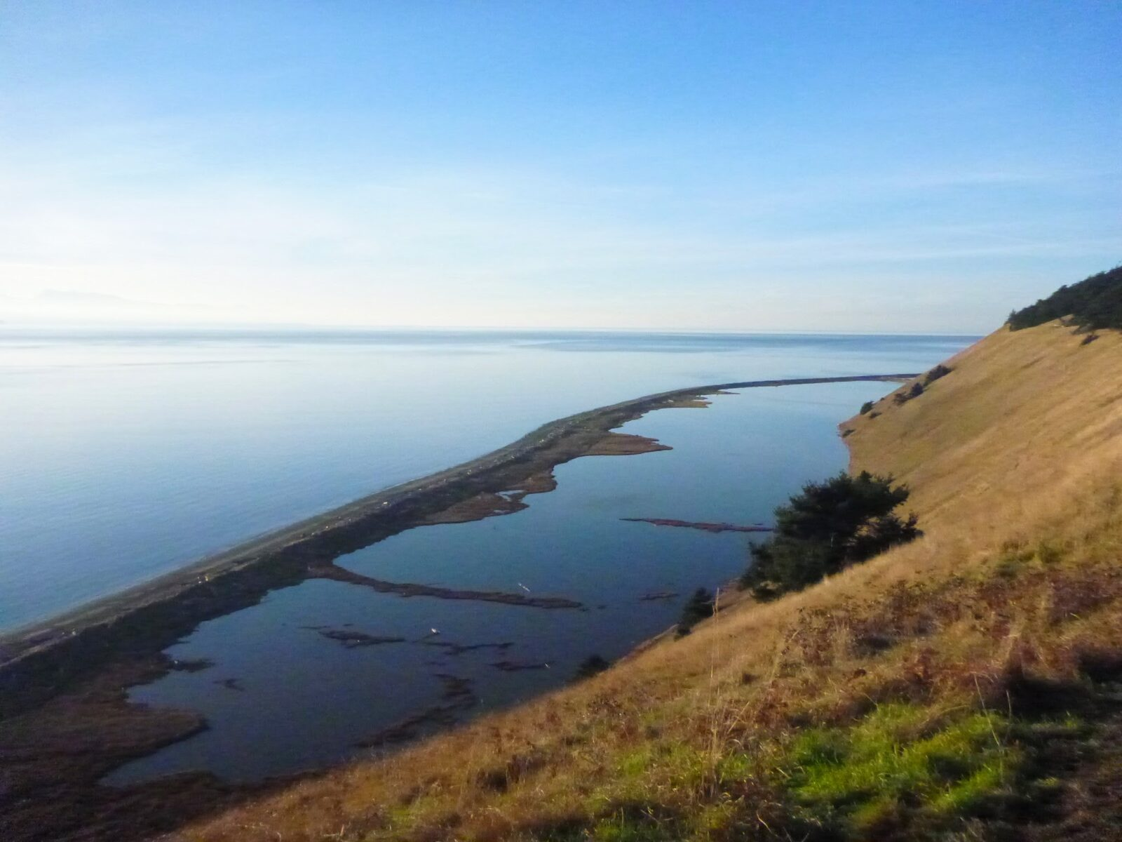 A sandy spit on the beach encircles a lagoon. It is seen from above from a grassy hillside on a Whidbey Island hike. There is blue calm water stretching away into the distance on a sunny blue sky day