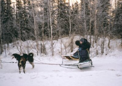 A person in winter gear holding on to a dog sled. Two dogs are seen attached to the harness. It's a snowy partly cloudy day and there are trees in the background