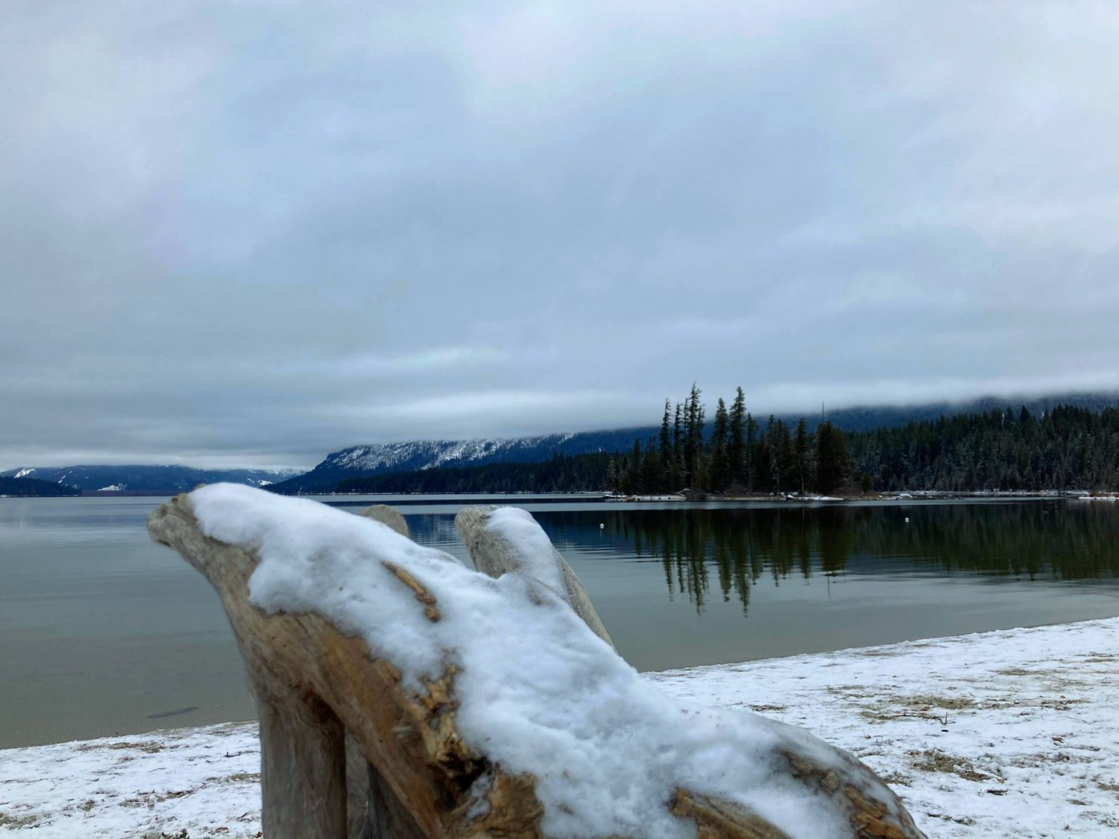 Lake Wenatchee on an overcast winter day. The lake is not frozen but it is surrounded by snow. There are also snowy trees aroudn teh lake and a piece of snow covered driftwood in the foreground